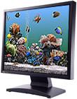 Marine Aquarium 2.6 for Windows