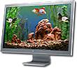 Goldfish Aquarium 2.0 - OS X