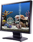 Marine Aquarium 3.3 for Windows