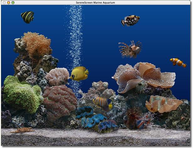 marine aquarium 2.6 gratuit