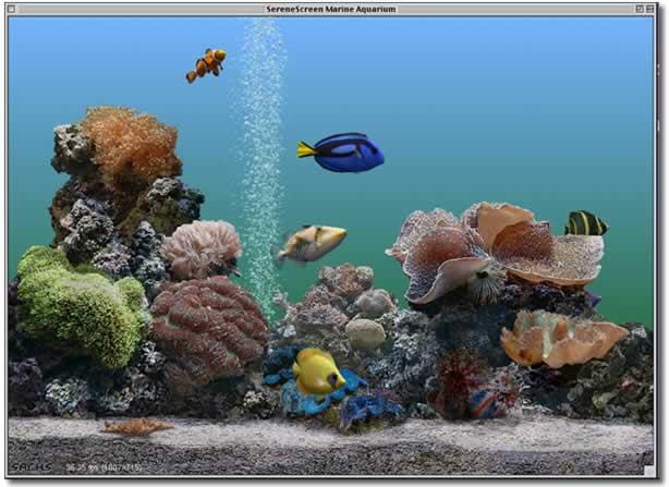 prolific publishing inc screen savers marine aquarium 2 0 for mac os 9. Black Bedroom Furniture Sets. Home Design Ideas