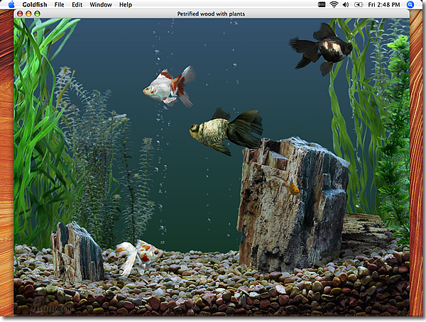 Prolific publishing inc screen savers os x for Aquarium decoration for goldfish
