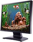 Goldfish Aquarium 2.0 - Windows